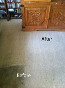 Bedroom-Carpet-Cleaning-Morgan Hill