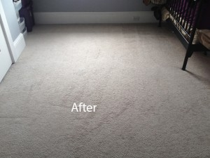 Bedroom-Wall-to-Wall-Carpet-Cleaning-Morgan Hill-B