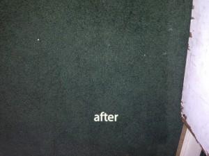 Morgan Hill-2-after-carpet