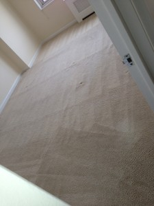 Morgan Hill-Carpet-Clean-room