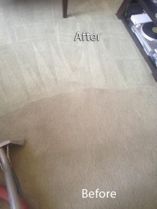 Morgan Hill-Carpet-Cleaning-Company