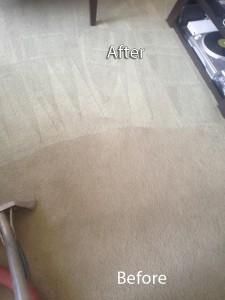 Morgan Hill-Carpet-Cleaning-Company