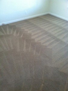 Morgan Hill-Carpet-Cleaning-Wall-To-Wall
