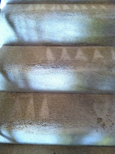 Morgan Hill-Stairs-Carpet-Cleaning