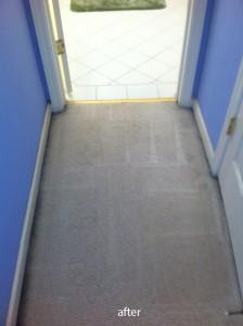 Morgan Hill-Vomit-2-after-carpet