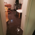 Morgan Hilloffice-room-flood-damage-repair