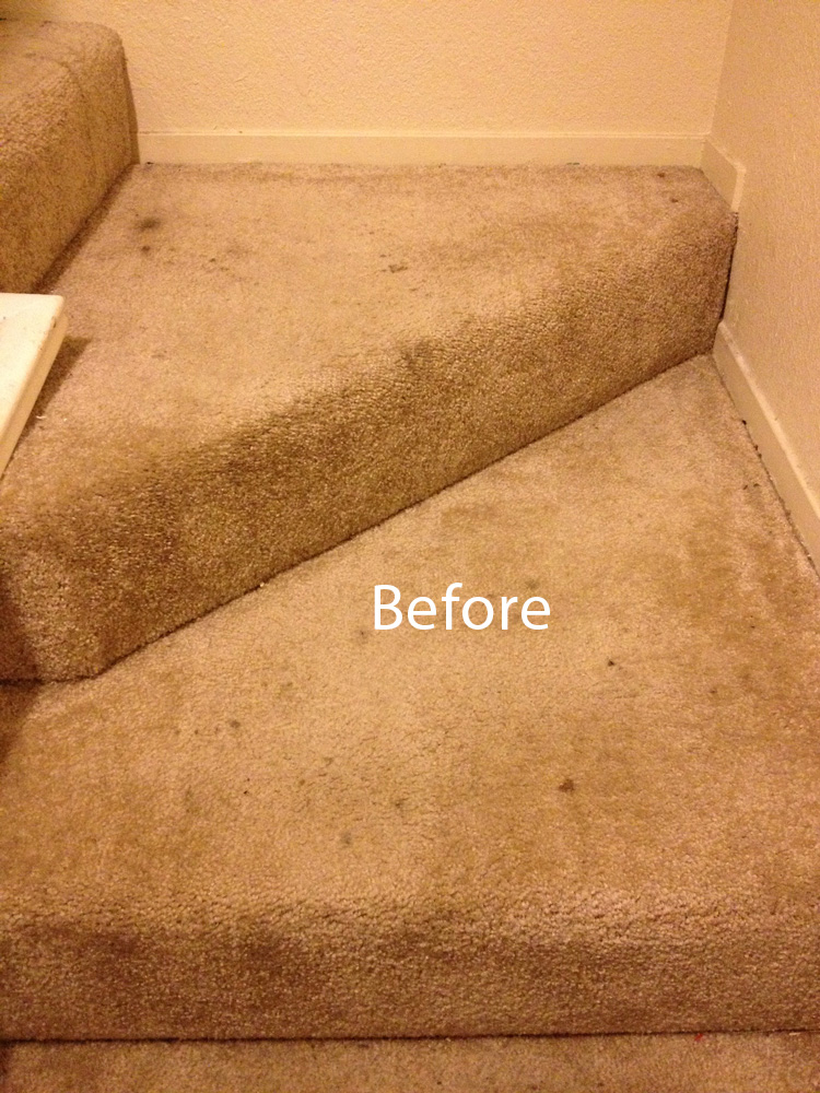 Carpet Cleaning Man Hill 408 275 2160