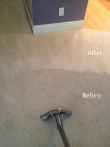 Steam-Carpet-Cleaning-Morgan Hill